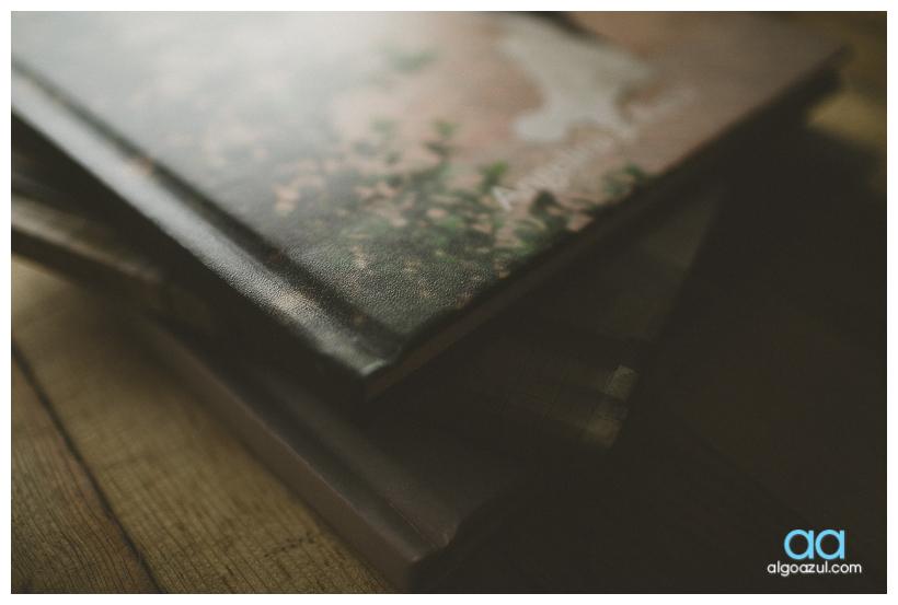 photobook, album de fotos boda, algoazul